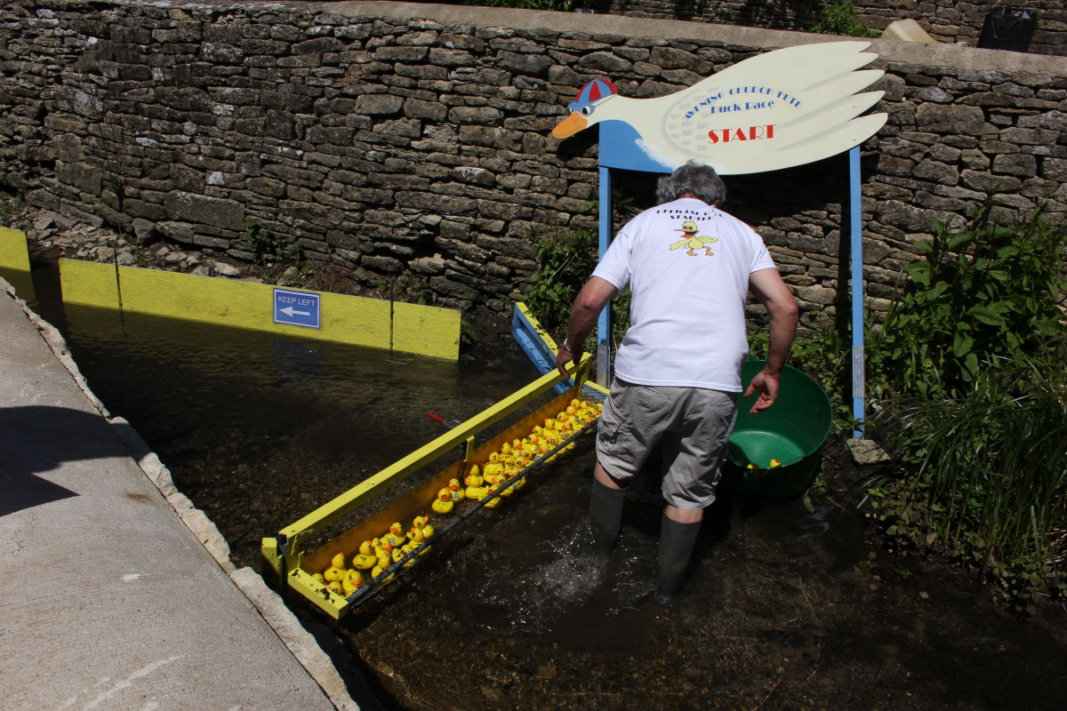 Duck Race Preparations