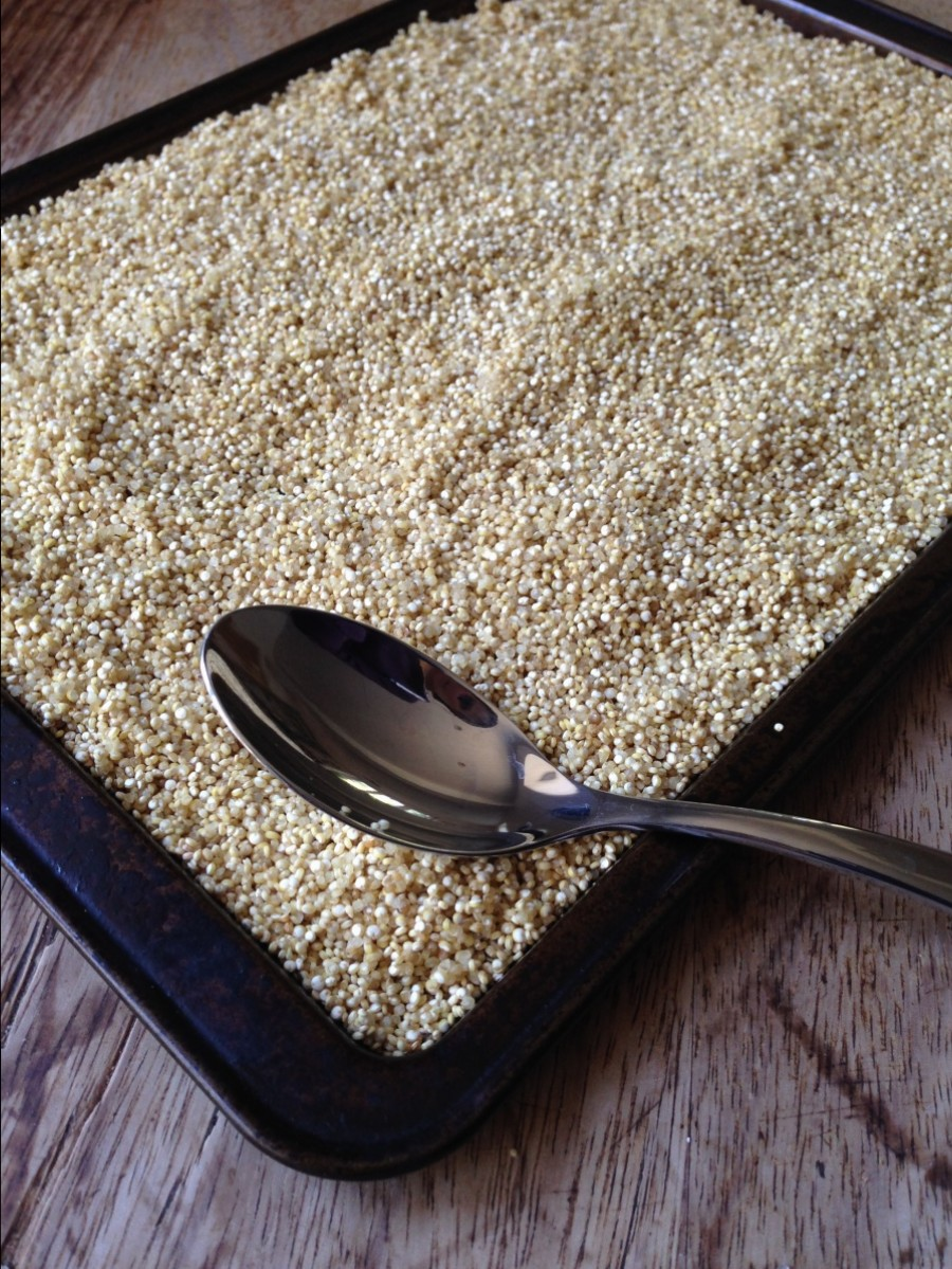 Leave Quinoa to Dry